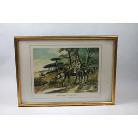 LAM-CAZADORES DE ALMANSA 13º DE CABALLERÍA (1883)